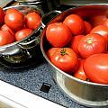Tomatoes Aplenty by Grace Dillon