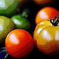 10044 Tomatoes by Colin Hunt