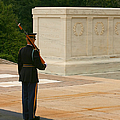 Tomb Of The Unknown Soldier by Kim Hojnacki