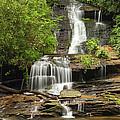 Toms Branch Falls by Harold Rau