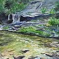 Tom Branch Falls by Sheena Kohlmeyer
