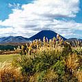 Tongariro National Park New Zealand by Kurt Van Wagner