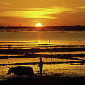 Tonle Sap Sunrise 01 by Rick Piper Photography