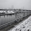 Too Cold To Cycle by Douglas Barnard
