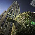 Top Of The Rock by Fran Gallogly