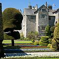 Topiary Garden by Peter Lloyd