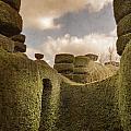 Topiary Maze In A Formal Garden by Lee Avison