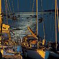 Topsham Boats by Pete Hemington