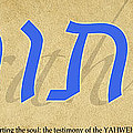 Torah by CE Haynes