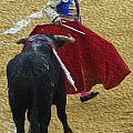 Torero-06-02 by Jose Luis Pastor