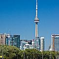 Toronto Harbour by Steve Harrington