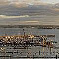 Torquay Panorama by Edmund Nagele