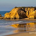 Torquay Surf Beach Australia by Louise Heusinkveld