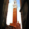 Torre Del Mangia Siena by Mike Nellums
