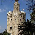 Torre Del Oro by Lorraine Devon Wilke