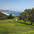 Torrey Pines Golf Course North 6th Hole by Adam Romanowicz