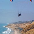 Torrey Pines Paragliders by Anna Lisa Yoder