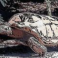 Tortoise Of Stone by Belinda Lee