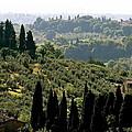 Toscana by Ira Shander