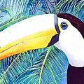 Toucan by Pauline Walsh Jacobson