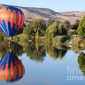 Touchdown On The Yakima River by Carol Groenen