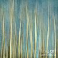 Touching The Sky by Priska Wettstein