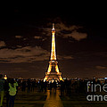 Tour Eiffel At Night With Reflection.  by Artur Debat