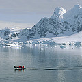 Tourists In Zodiac Boat Paradise Bay by Konrad Wothe