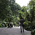 Tourists Inside A Downward Sloping Section In The Orchid Garden by Ashish Agarwal