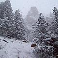 Towards Top Of Bear Peak Mountain During Intense Snow Storm - North Side by Daniel Larsen
