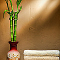 Towels And Bamboo by Olivier Le Queinec