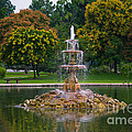 Tower Grove Fountain by Cindy Tiefenbrunn