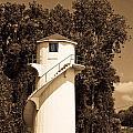 Tower In Sepia by Douglas Barnett