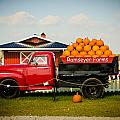 Tower Of Pumpkins by Crystal Crist