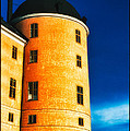 Tower Of Uppsala Castle - Sweden by David Hill