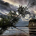 Tower Rock In The Mississippi River by Robert Charity