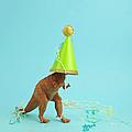 Toy Dinosaur Wearing A Party Hat by Juj Winn