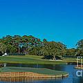 Tpc Sawgrass Island Green by Randy J Heath