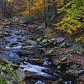 Tracking Color - Big Hunting Creek Catoctin Mountain Park Maryland Autumn Afternoon by Michael Mazaika