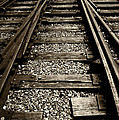Tracks Into Tracks - 2 by Paul W Faust -  Impressions of Light