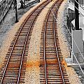 Tracks  by Rick Selin