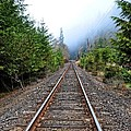 Tracks To No Where by Image Takers Photography LLC - Carol Haddon