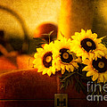 Tractors And Sunflowers by Todd Bielby