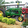 Tractors by Laurie Eve Loftin