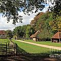 Traditional Countryside Britain by Julia Gavin