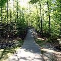 Trail Around Lake Johnson by Judith Stewart