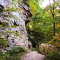Trail Beside The Cliff Wildcat Den State Park by Cynthia Woods