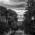 Trail To Town by Sheri Bartoszek