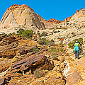 Trail Up To The Tanks From Capitol Gorge Pioneer Trail In Capitol Reef National Park-utah by Ruth Hager