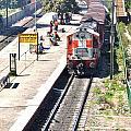 Train At Delhi Station by Kim Bemis